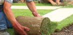 Residential Cleaning Services,  Regular Cleaning and Lawn Mowing Brisbane
