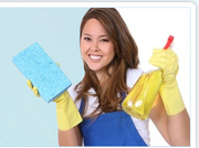 Commercial and Domestic Cleaning Company with High Quality Cleaning Solutions