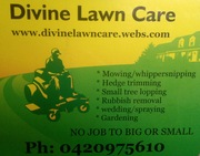 Divine Lawn Care And Yard Maintenance