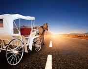 Victoria Horse Transport