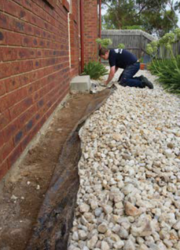 Termite Treatment Ipswich