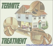 Instant Elimination Of Termites By Leading Solution - Termidor