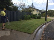Professional Landscaping Contractors Brisbane