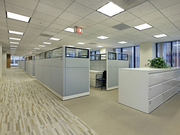 Commercial carpet cleaning services for a clean and sanitised carpet