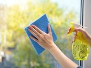 Best Window Cleaning Services in Brisbane