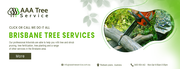 No more hassle of removing trees with AAA Tree Service