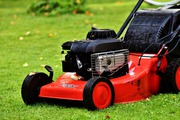 Experienced Garden Care and Maintenance Service in Brisbane