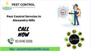 Best Pest Control Services in Alexandra Hills,  QLD