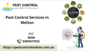 Best Pest Control Services in Melton